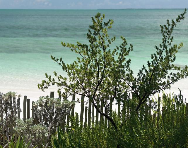 Beach. Turquoise Beach. #Beach #Turquoise