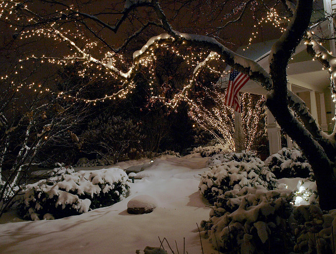 Christmas Lights. Snow Christmas Lights on Tree. Snow Christmas Lights. #Snow #Christmas #ChristmasLights James Martin Associates