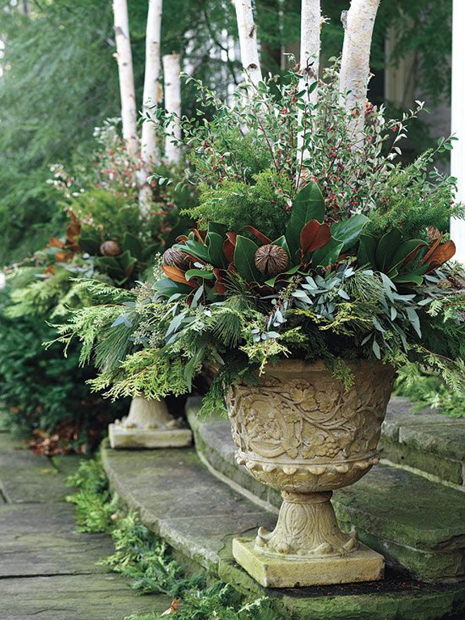 christmas planter ideas christmas container christmas planter christmasplanter canadian gardening - Outdoor Christmas Planter Decorating Ideas
