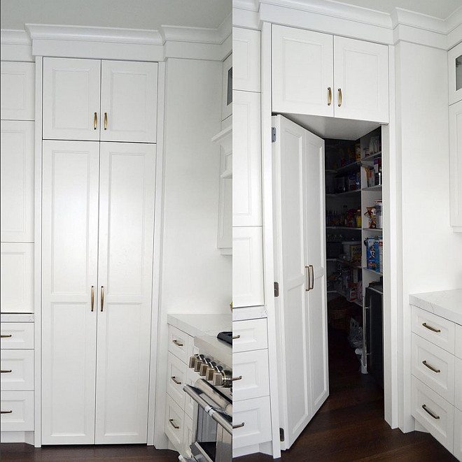 Kitchen secret pantry door. This secret pantry door in this kitchen is so fun! Paneling the door helped create a seamless look in the space! #kitchen #secretpantrydoor #kitchensecretpantrydoor Sita Montgomery Design