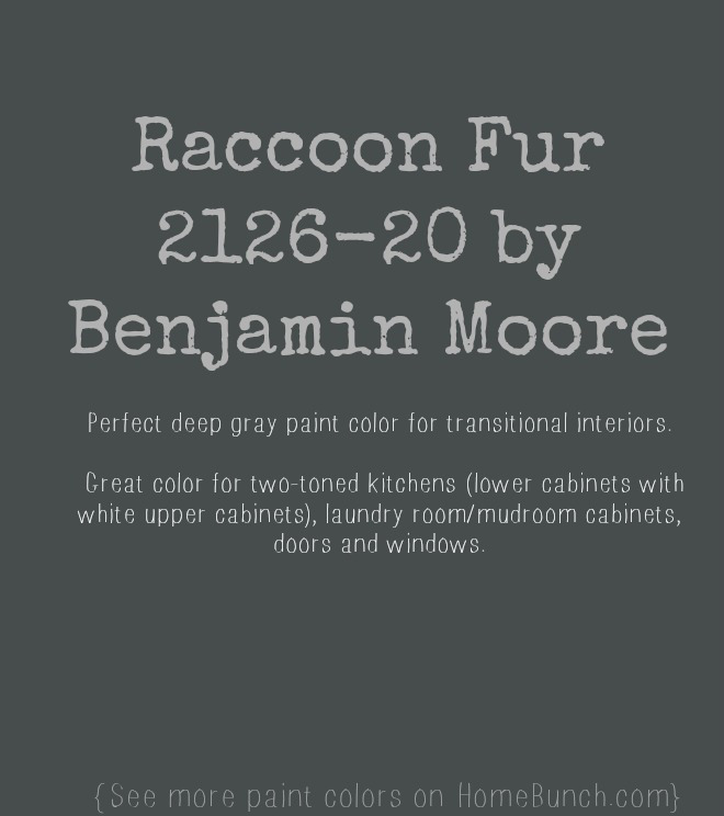 Raccoon Fur 2126-20 by Benjamin Moore. Great deep gray paint color. Gray Benjamin Moore Paint Color Raccoon Fur 2126-20 by Benjamin Moore. #RaccoonFur #Benjamin Moore Via HomeBunch