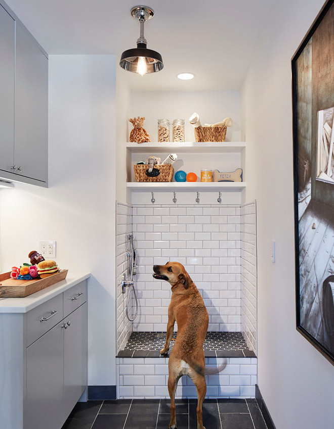 "Dog Shower. Laundry room, mudroom with dog shower. This lucky dog gets a room all to himself! Isn't this dog shower great? Tiling: Floor in the Room: Adoni Black 16"" x 24"" . Floor of Shower: Noir Hexagon 2"" x 2"". Wall Tile: Avanti Subway 3"" x 6"", Beveled, White Ice Bright. Dog shower features tiled walls and open shelves for towels and dog shampoo. #DogShower #tiles Martha O'Hara Interiors"