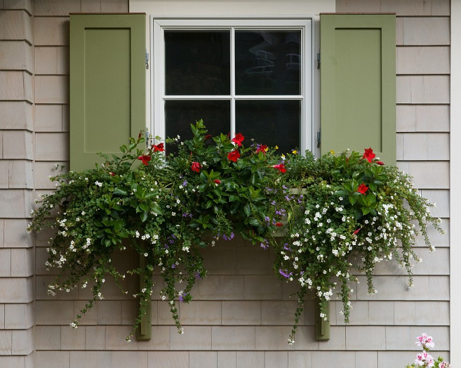 Window boxes. Window planter ideas. Window boxes and planters. #Windowboxes #windowplanters #window #plants Bowley Builders