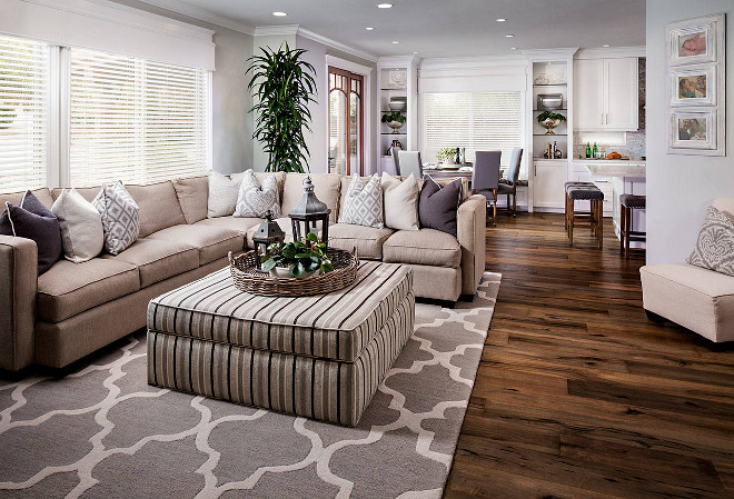 Family room flooring and rug. Family room flooring is Provenza, line is Pompeii and color is Ischia. The rug is from a company called Jaipur and it is the City Rug. family-room-flooring-and-rug #Familyroom #flooring #rug Tracy Lynn Studio