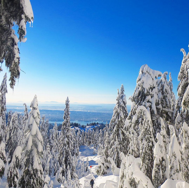 Grouse Mountain Vancouver BC Canada. #GrouseMountain #VancouverBC #Vancouver #BC #Canada Photo by Sonja - Instagram @jshomedesign