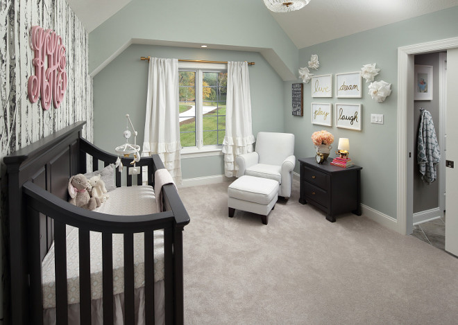 Sherwin Williams Comfort Gray. Sherwin Williams Comfort Gray. Sherwin Williams Comfort Gray. Sherwin Williams Comfort Gray #SherwinWilliamsComfortGray Barrington Homes Inc.