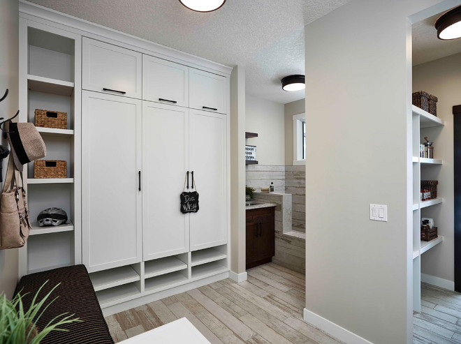 Mudroom with Dog Shower. Pet Shower. Mudroom with Dog Shower. Pet Shower ideas. Mudroom with Dog Shower. Pet Shower. Mudroom with pet shower layout #Mudroom #DogShower #showerpet #showerpetideas #mudroomshowerpet #petshowerlayout Albi Homes