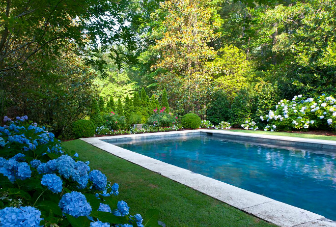 Grass Pool Deck. Pool Landscaping. Pool. Lawn Pool. Hydrangea Agricultural Services