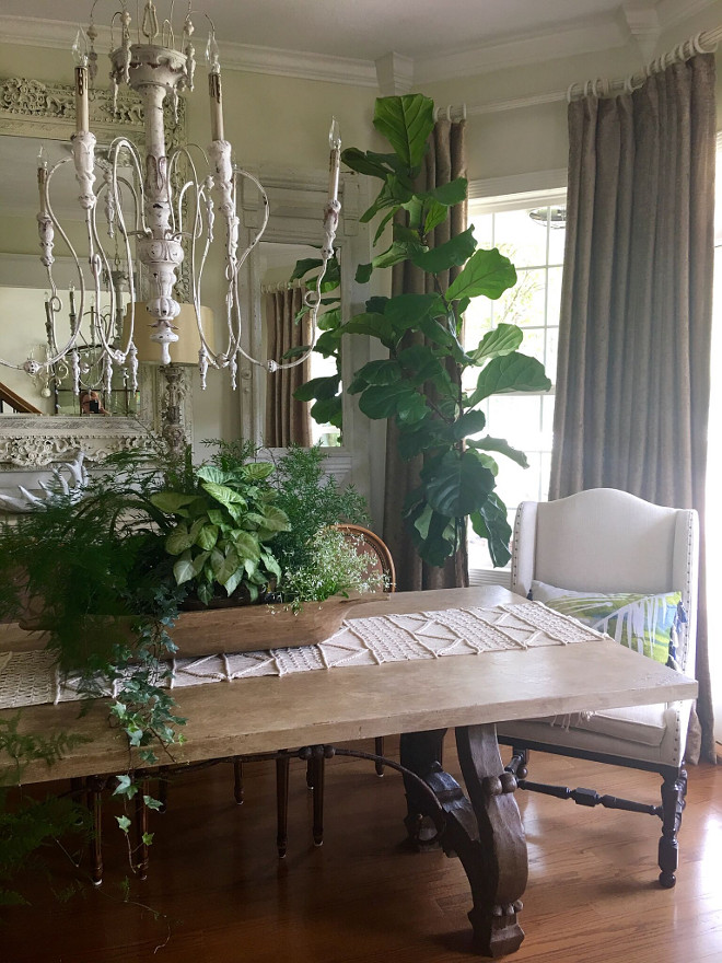 Indoor plant ideas. Indoor planters. I love to add real greenery to a neutral room! I filled my old dough bowl with a good mixture! The chandelier is from Sunbelt lighting! Indoor plants. Indoor plants #indoorplants #plants #planters Beautiful Homes of Instagram @cindimc.ivoryhome