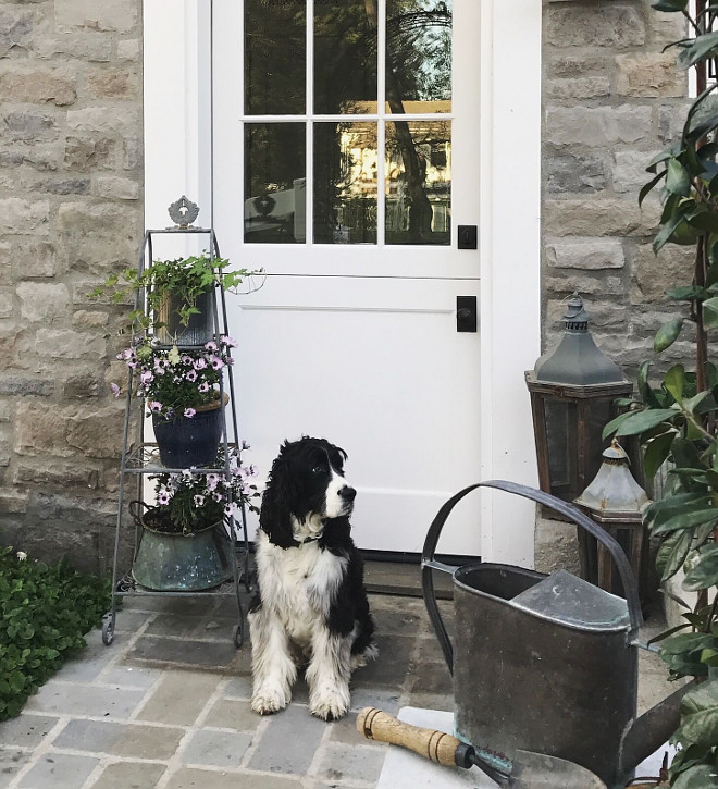 Dutch Doors. Dutch Door. Winston often guards the Dutch door leading into the cottage. #dutchdoor #dutchdoors #cottage Beautiful Homes of Instagram @SanctuaryHomeDecor