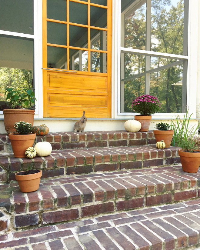 Brick steps. Cute bunny and fall decor on brick steps #bricksteps @theclevergoose