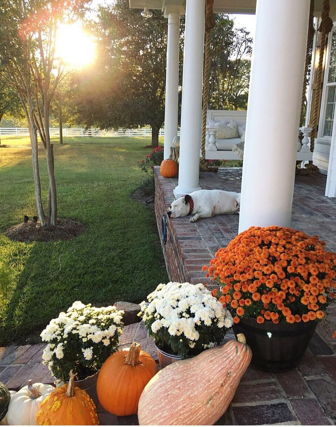 Porch Fall Decor with pumpkins and flowers. Porch Fall Decor with pumpkins and flowers. Porch Fall Decor with pumpkins and flowers #Porch #FallDecor #pumpkins #flowers @cindimc.ivoryhome