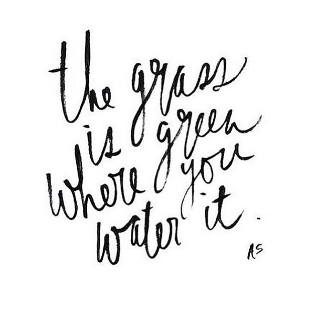 The grass is greener where you water it. Work!
