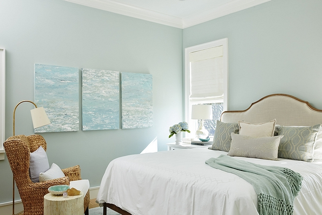 Sherwin Williams Sea Salt similar paint color Sherwin Williams Sea Salt