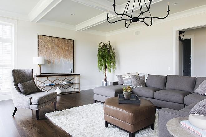 Shag rug Living room trend Shag rug Shag rug White Shag rug source on Home Bunch #Shagrug