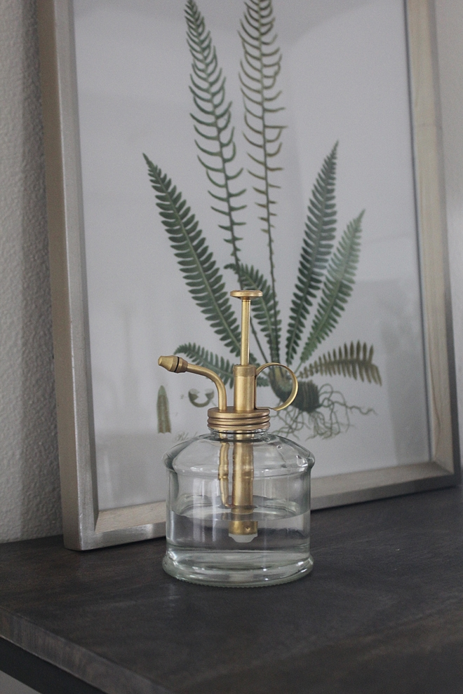 Plant Mister Plant Mister Brass and glass Plant Mister Plant Mister #PlantMister