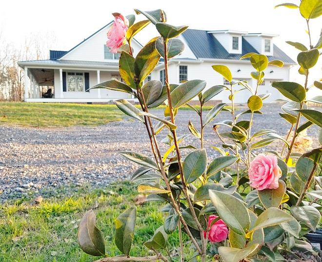 Modern Farmhouse garden ideas