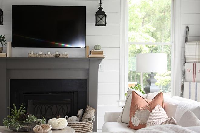 Birch log fireplace decor