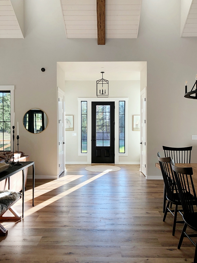 Interior Paint Color Combination Easy way to decide on interior paint colors The front door paint color is Tricorn Black by Sherwin Williams Walls are Agreeable Gray by Sherwin Williams and trim paint color is Extra White by Sherwin Williams #InteriorPaintColorCombination #PaintColorCombination #InteriorPaintColor #frontdoorpaintcolor #wallpaintcolor #trimpaintcolor