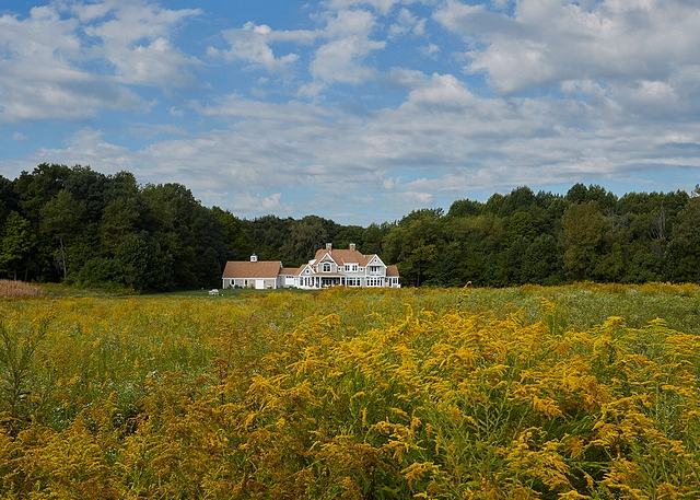 Fields of goldenrod provide a lovely foreground to the Nantucket style farmhouse #farmhouse #farmhosue #Nantucket