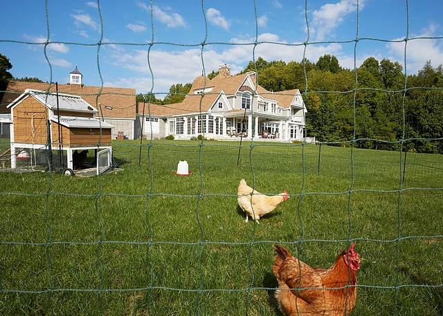 Chicken Coop Farmhouse with Chicken Coop Farmhouse Chicken Coop Residential Chicken Coop Backyard Chicken Coop #ChickenCoop #farmhouse
