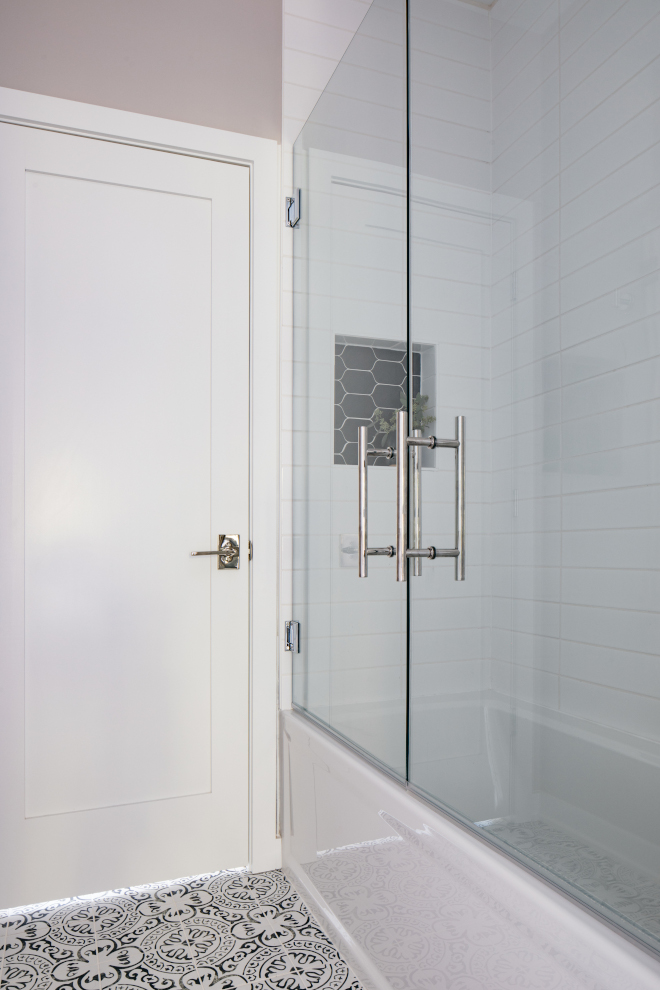 Doors Sherwin Williams SW 7006 Extra White