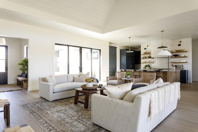 Open concept Modern Farmhouse Interiors