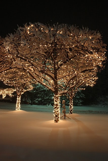 Christmas Decorating Ideas Christmas Decorating Ideas Christmas ...