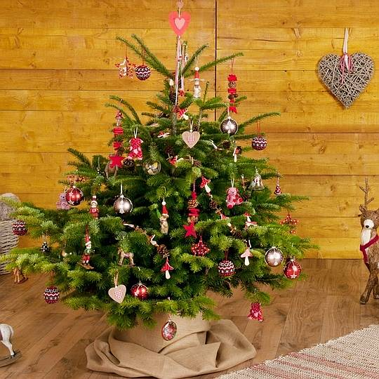 Christmas decoration ideas home bunch interior design - Sapin de noel decoration blanc ...