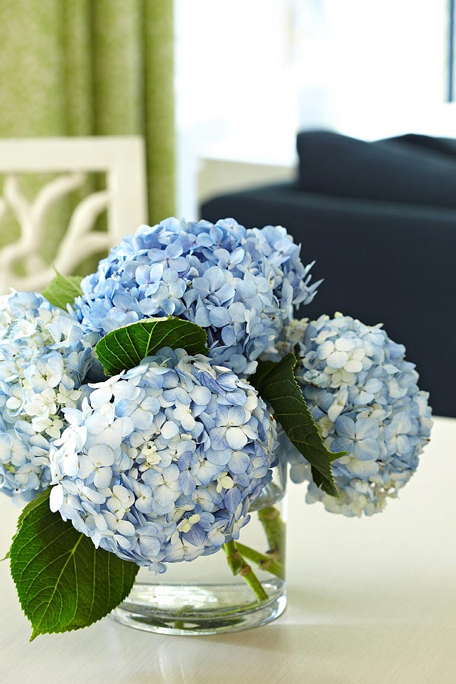 Blue Hydrangeas. Anne Hepfer Designs.