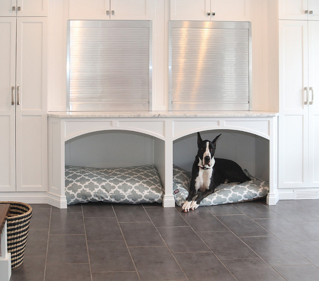 Interior design ideas home bunch interior design ideas for Dog room furniture