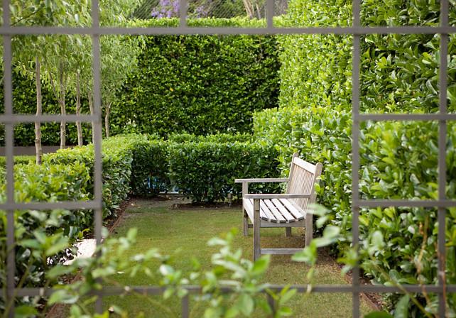 Garden Ideas. French Garden Ideas. Garden Plants. The plant here is viburnum odoratissimum. #Garden #Plants Peter Fudge Gardens.