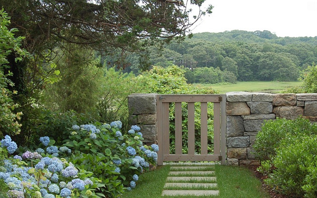 Garden Tips. Blue Hydrangeas line the bluestone pavers are used to create pathways leading to the tidal marsh and ocean view. #Garden #GardenTips Kimberly Mercurio Landscape Architecture