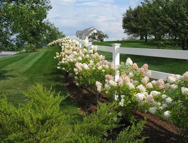 Garden. Graden Ideas. Garden Design. #Garden #Gardens Linden L.A.N.D. Group.