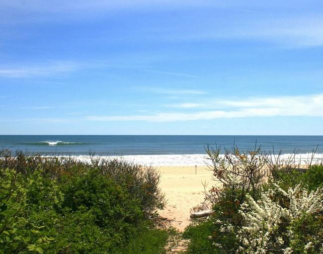 Hamptons Beach. Classic Hamptons Beach. #HamptonsBeach