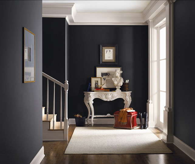 Sherwin-Williams Paint Colors. Sherwin-Williams Tricorn Black SW 6258. #SherwinWilliams #TricornBlack SW 6258
