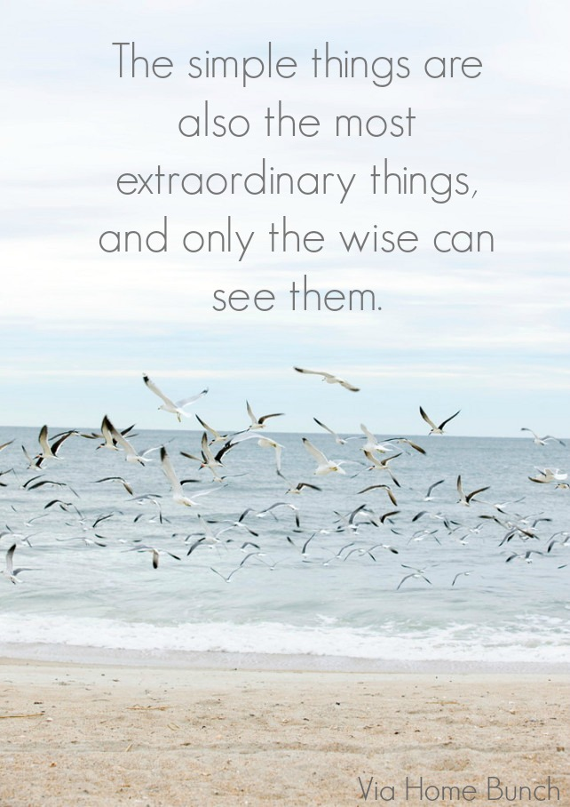 The simple things are also the most extraordinary things, and only the wise can see them.  Photo by Erica George Dines.