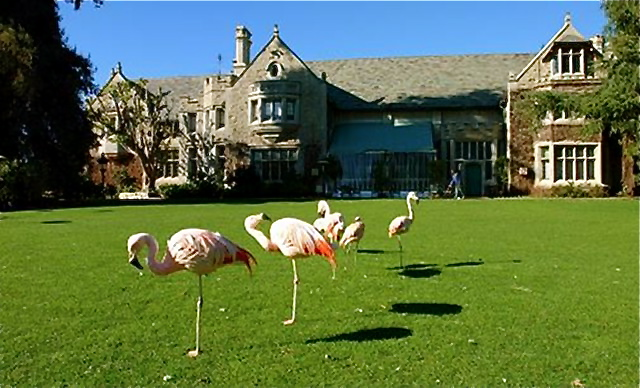 Playboy Mansion Backyard :  garden? Why not? After all, this place is the Playboy mansion, right